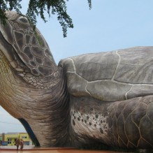 Giant Turtle, Kartini Beach Jepara