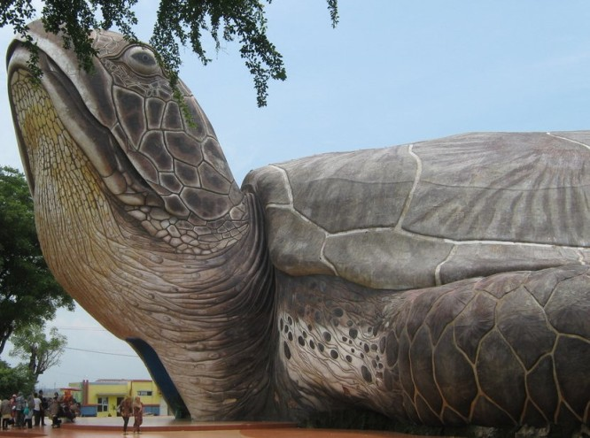 Giant Turtle Jepara