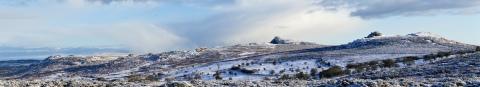 Dartmoor's tors