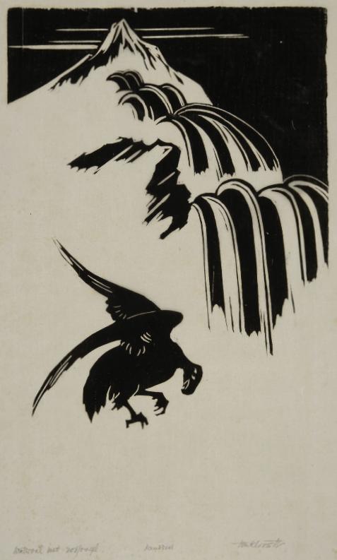Waterval met roofvogel